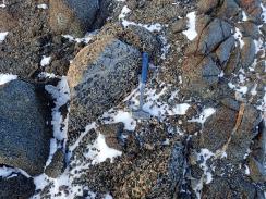 Crazy leopard rock © www.elizabeth-erickson.com